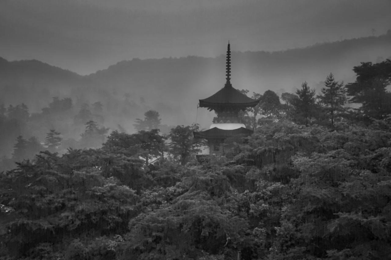 Architecture Beauty In Nature Black & White Cultures History Island Islands Japan Japanese Culture Landscape Landscape_Collection Miyajima Mountain Nature Pagoda Place Of Worship Religion Spirituality Temple Travel Destinations