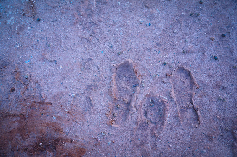 3 legged Monster 😱 Steps Evidence Dinosaur Traces Crime Scene On The Floor Dirt Big Foot Scared Streetphotography Casual Visual Witness Gotcha Caught You I Will Find You Follow The Path The Signs Mobilephotography Shootermag Backgrounds Just Playing Around In The Park Minimalism Minimal