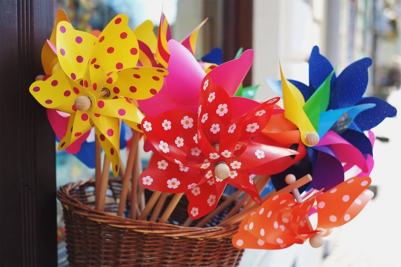Color pinwheel. Close-up No People Fragility Day Indoors  Nature Flower Head Pinwheel Toy Color Wind Energy Shop Gift Fun Sun