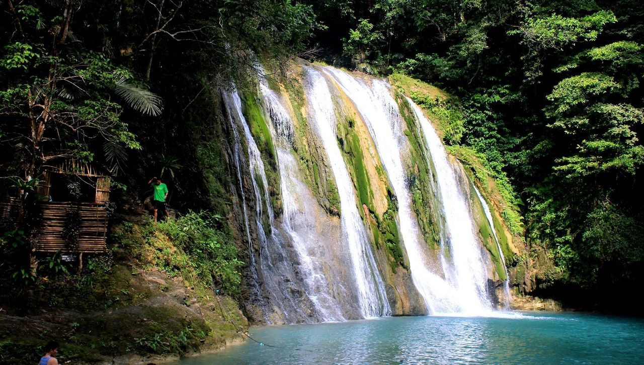 Beauty In Nature Daranak Daranak Falls Daranakfalls Flowing Flowing Water Forest Green Color Leisure Activity Lifestyles Motion Nature Outdoors Philipines Philippines Photos Plant Scenics Splashing Tourism Tourist Travel Destinations Tree Vacations Water Waterfall