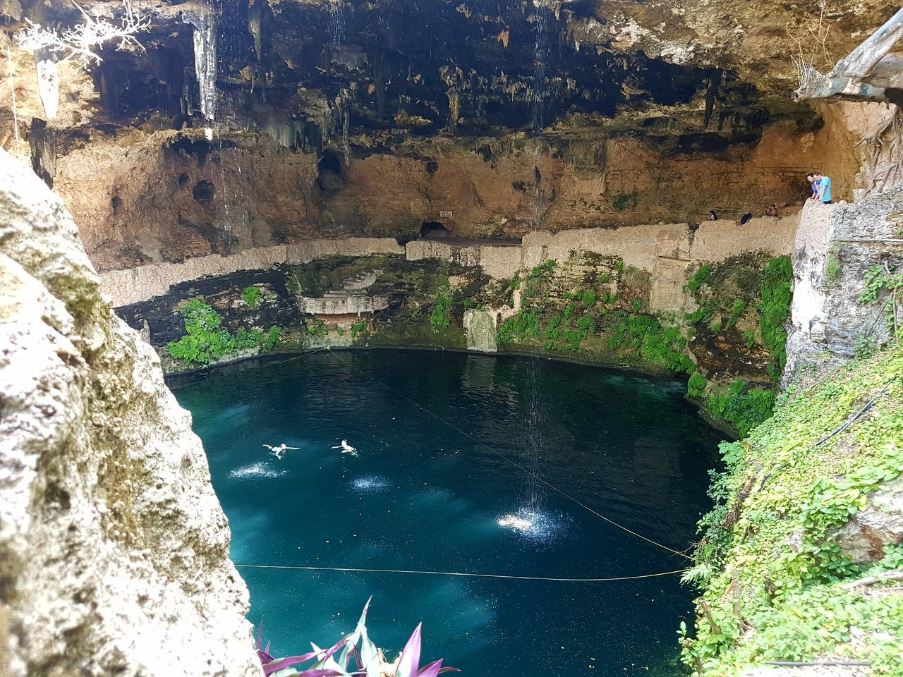 🌍💕 Water Wet Day Nature No People Tree Landscape Tranquility Photooftheday Beauty In Nature Sunlight Cenotes Paradise Beautiful Day Nature Photography Cenote—México Valladolid, Yucatán Word Perspective