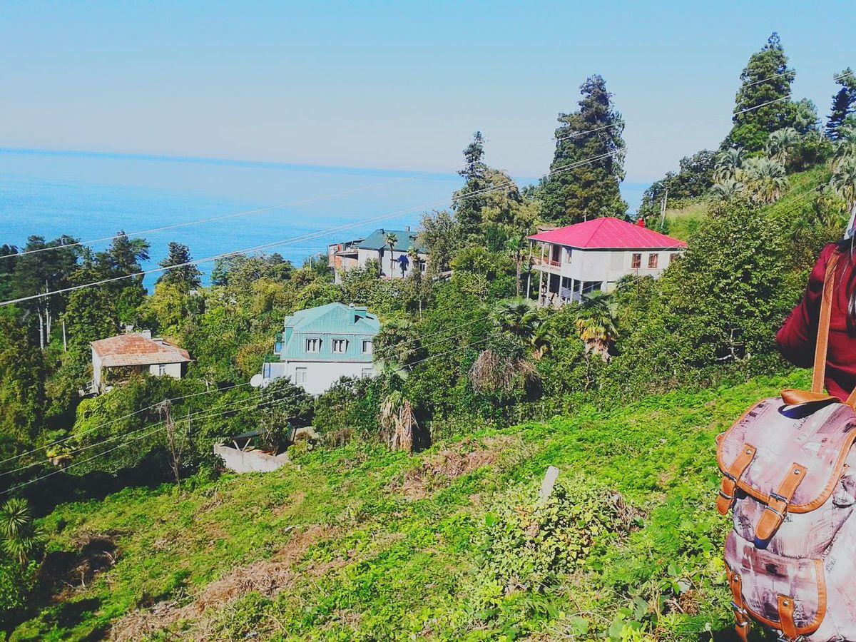 Trip with my friends in Batumi. Batumi Botanic Garden Colorful Houses Trip