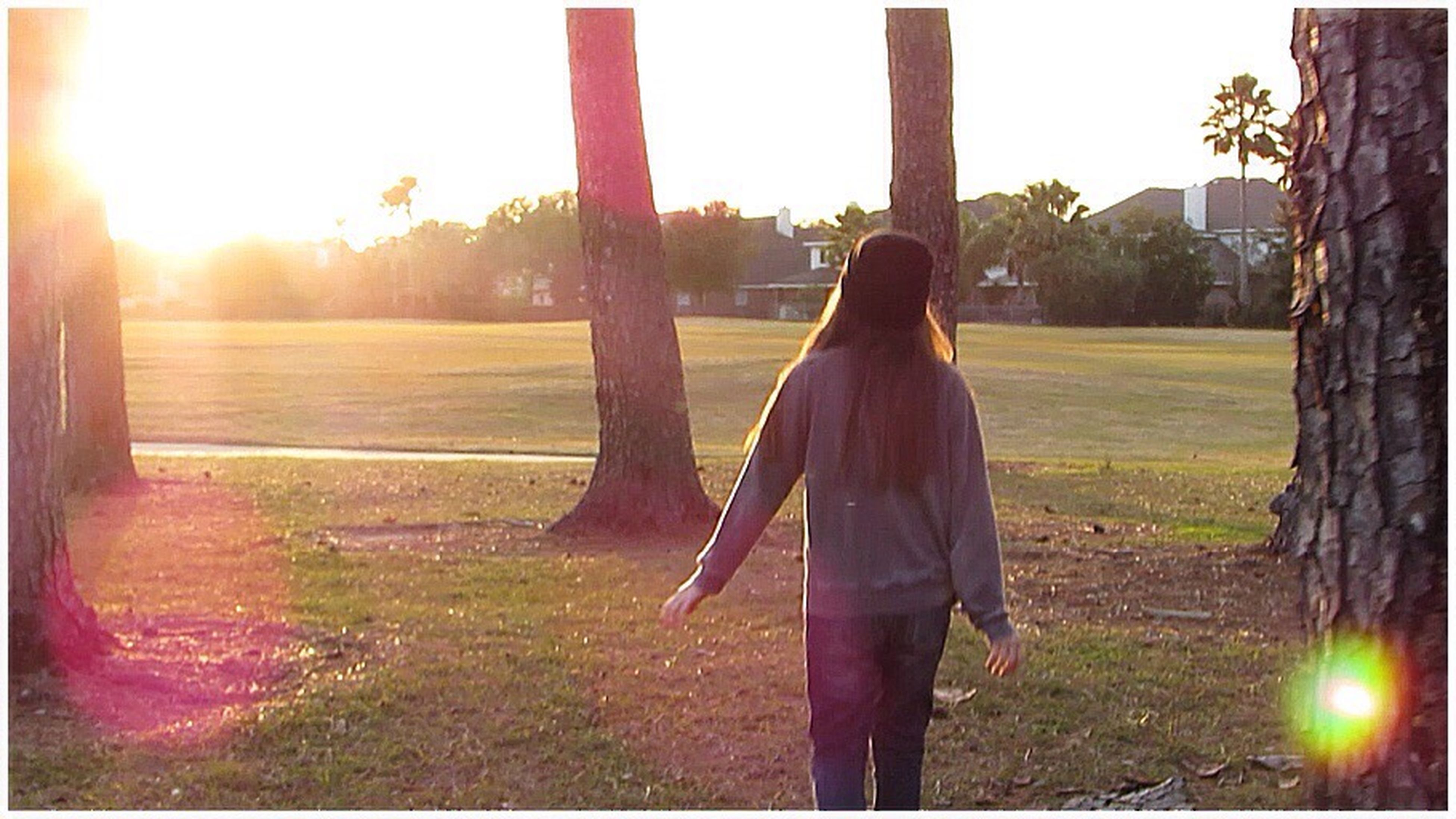 sun, grass, lifestyles, standing, sunlight, lens flare, rear view, sunbeam, leisure activity, field, sunset, tree, casual clothing, full length, person, clear sky, three quarter length, grassy