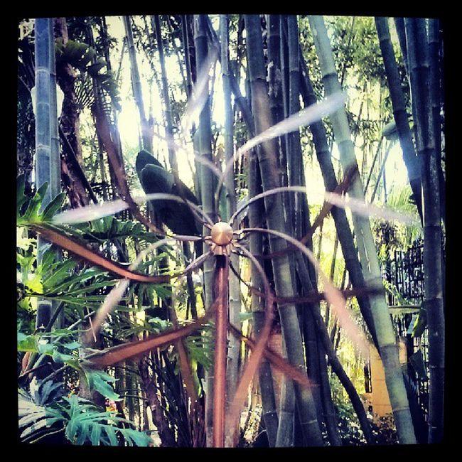 Spinning whirligig at Sunken Gardens!