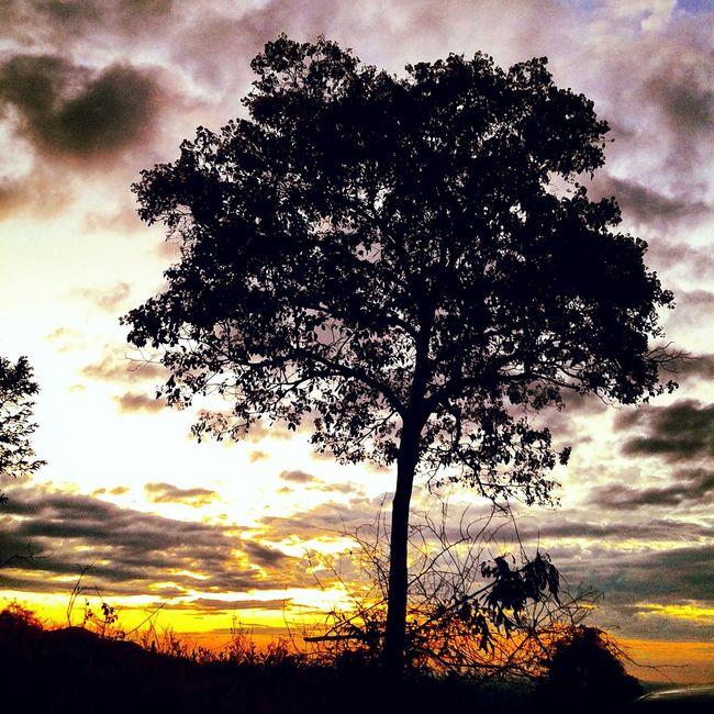 Hi! Hello World Brazil ❤ EyeEm Gallery Eye4photography  Skyperfect Hello World Sunset Silhuette Skyporn Sole...☀