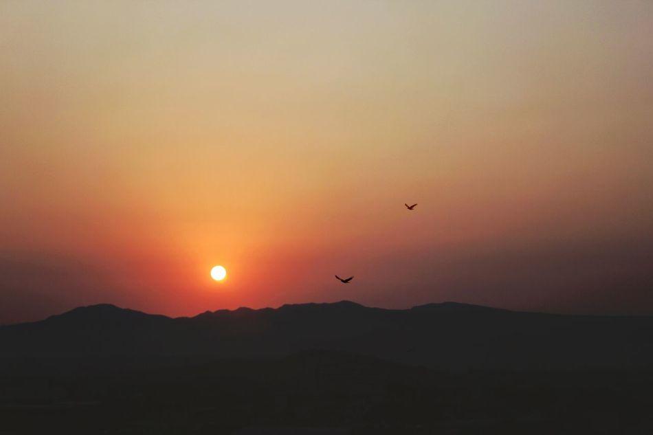 Sunset Sunset Silhouettes Sunset_collection Sunsetlover Sunsets 夕日 夕日が綺麗だー! 夕焼け