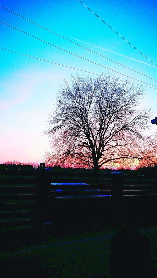 Sunset Sky Nature No People Tree Silhouette Beauty In Nature Reflection Outdoors Day Water Scenics Orange EyeEm Best Edits EyeEm Gallery Illuminated My Views Textured  EyeEm Best Shots EyeEmBestPics Overcastbutbeautiful Sunset Silhouettes Sunsetporn Indoorsphotography