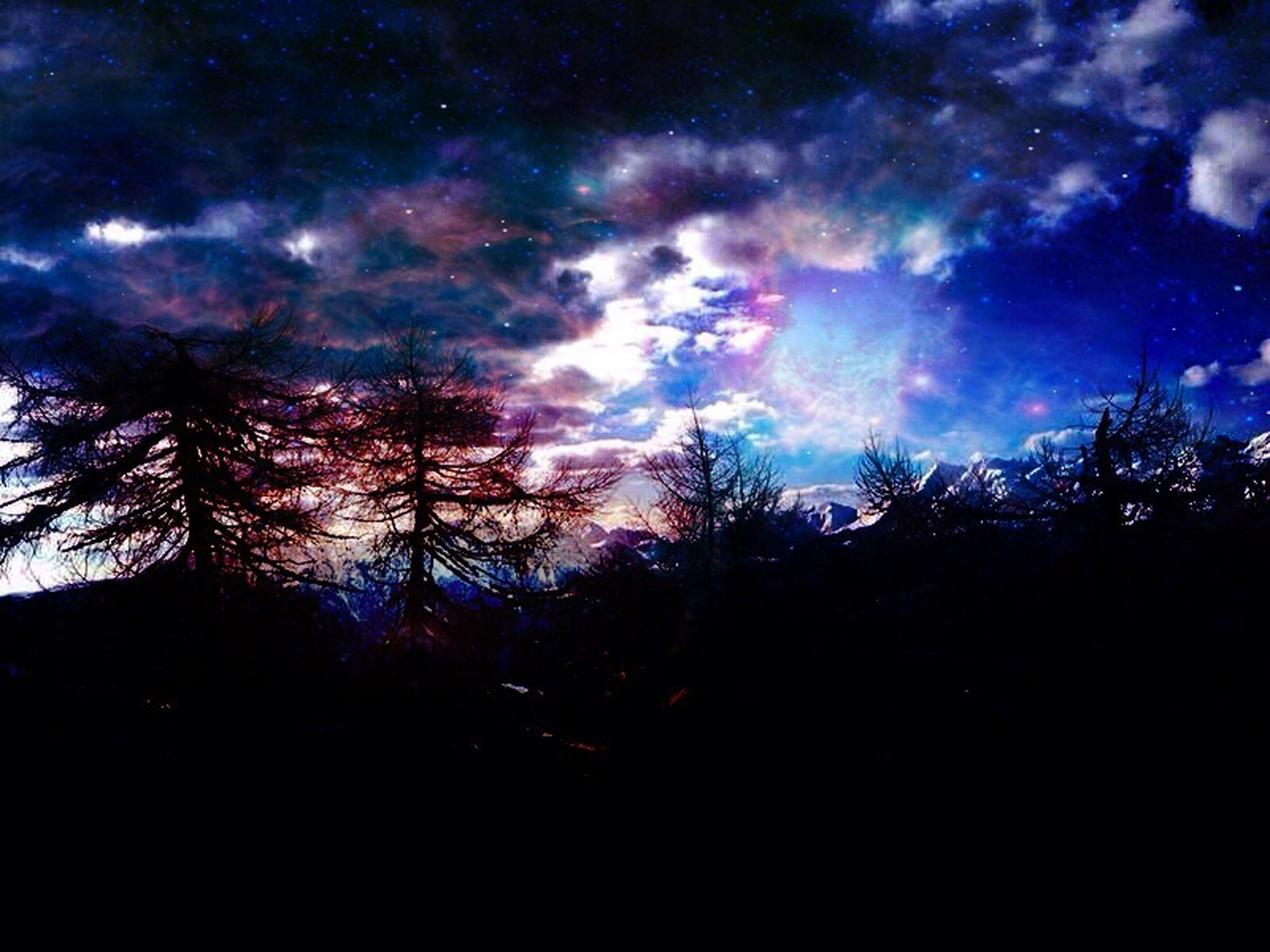 tree, silhouette, sky, tranquility, scenics, night, beauty in nature, tranquil scene, low angle view, nature, cloud - sky, dusk, idyllic, dark, dramatic sky, outdoors, blue, cloudy, no people, majestic