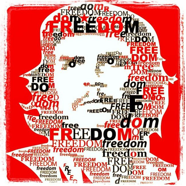 """""""I don't care if I Fall as long as someone else picks up my gun and keeps on shooting."""" Che Guevara"""