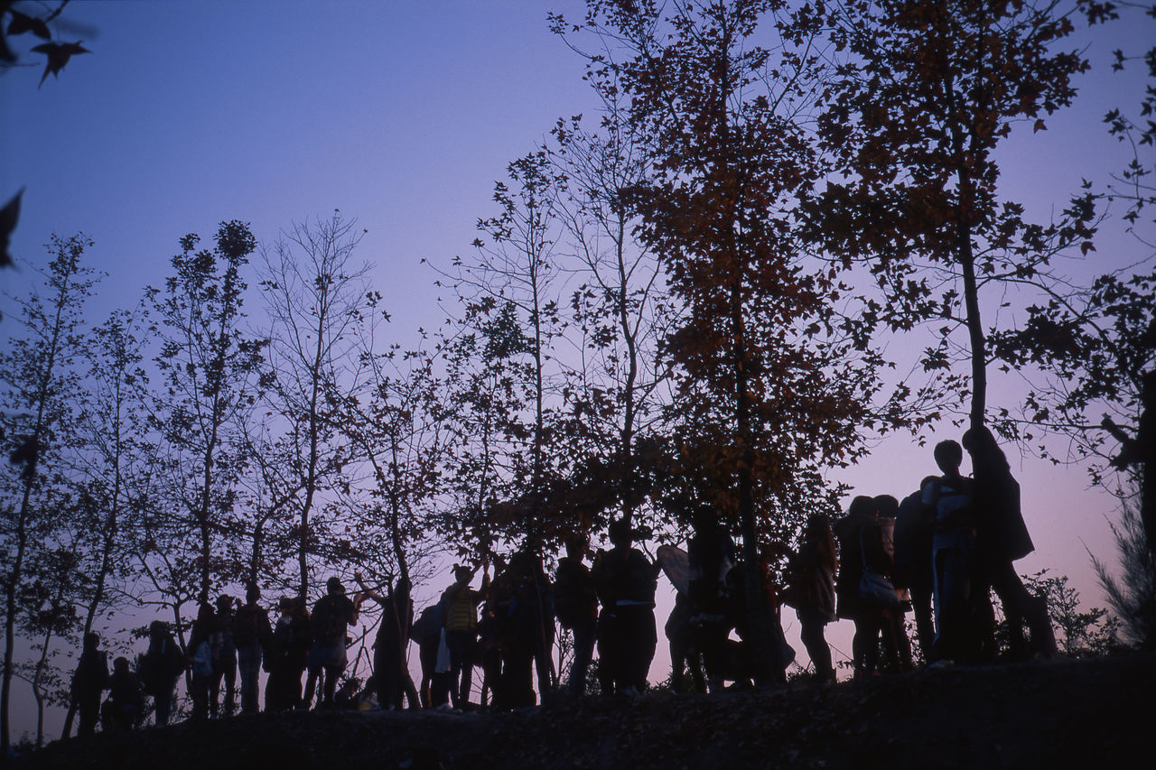 Blue Crowd Enjoying Life Enjoyment Eye4photography  EyeEm EyeEm Best Shots EyeEm Gallery EyeEm Nature Lover EyeEmBestPics Velvia RVP50 Film Photography Filmcamera Filmisnotdead Filmphotography Fine Art Photography Nature Outdoors Shadow Sky Standing Sunset Tree Klasse S