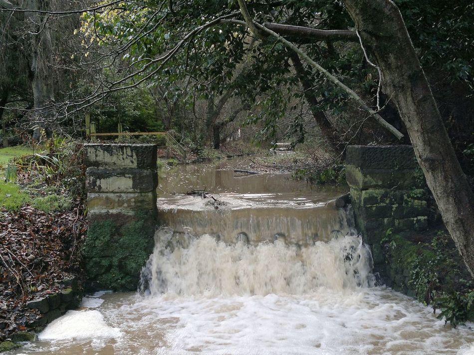 The Arrowe Brook Wirral Arrowe Brook Arrowe Park Merseyside