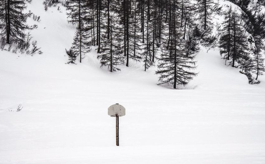 Wrong Season pt.I Basketball Scenery Shots Obertauern Winter Wonderland From My Point Of View Melancholic Landscapes Its Cold Out Here Snowwhite Austrian Alps Don't Take Life Too Seriously. You'll Never Get Out Of It Alive!  The Great Outdoors - 2016 EyeEm Awards