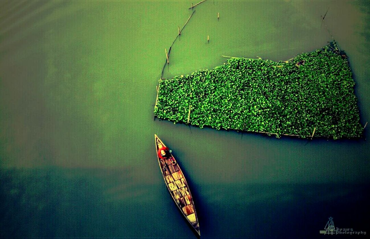 Green Color No People Outdoors❤ Boat InTheMiddleOfNoWhere River View Bangladesh 🇧🇩 Nature PhotographyLeisure Time Nature Green Green Green!  Close-up Indoors