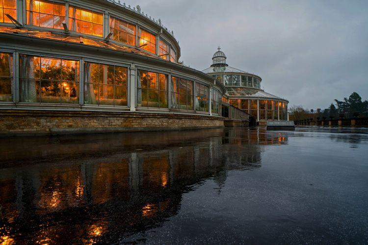 Palm House Reflection Water Reflections København Denmark Greenhouse Night Lights