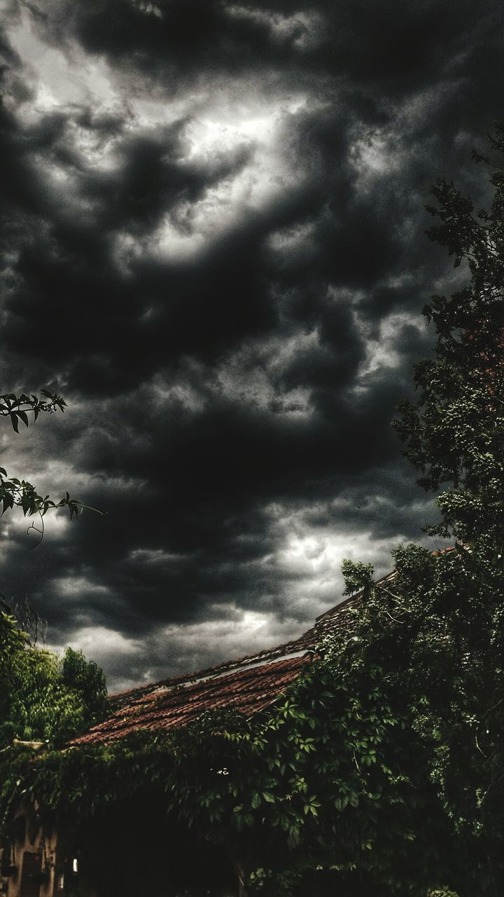 storm cloud, weather, cloud - sky, dramatic sky, sky, atmospheric mood, tree, storm, thunderstorm, nature, low angle view, beauty in nature, no people, outdoors, scenics, day, lightning