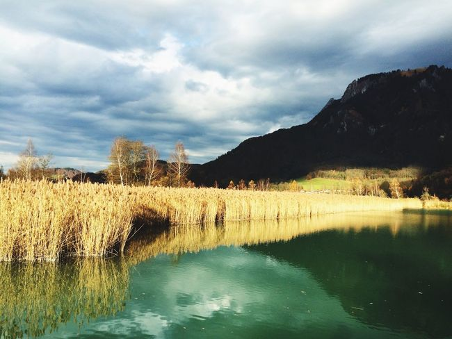 Nature Photography Naturelovers Bavarian Germany Spaziergang