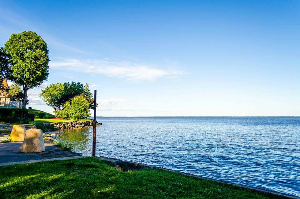 sea, water, tree, scenics, horizon over water, nature, beauty in nature, tranquility, tranquil scene, sky, blue, no people, outdoors, day, beach, growth, grass, clear sky
