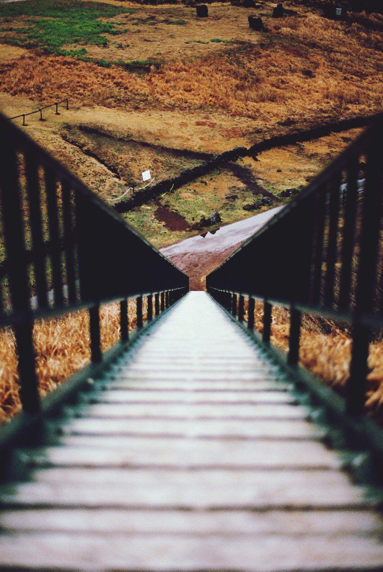 The Architect - 2017 EyeEm Awards The Way Forward Footbridge Day No People Nature Daytime EyeEmNewHere EyeEm Best Shots Landscape JEJU ISLAND  Jeju Island, Korea Trevel Viewpoint Film Photography Film Lifestyles Beauty In Nature