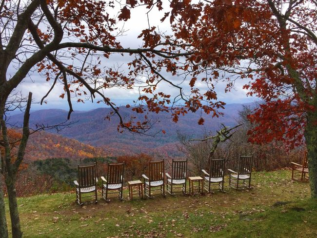 Tree Empty Mountain Absence Tranquil Scene Chair Growth Nature Beauty In Nature Day Green Color Outdoors Mountain Range Non-urban Scene Landscape Landscapes Blue Ridge Mountains North Carolina USA