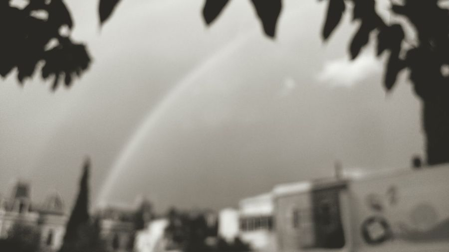 Life is not a rainbow. Rainbow is not life. Rainbow Nonconformity Notcolor Lies