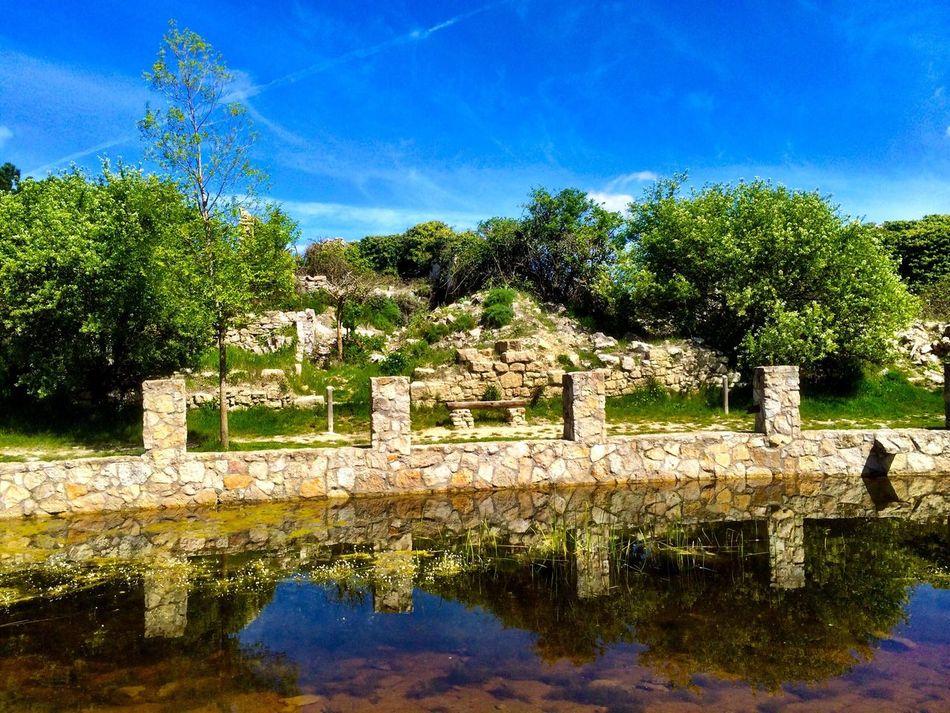 Catalunyalove Nature Your Art Is Portable With Caseable Aqui pots desendojar-te de tot, el banc esta esperant