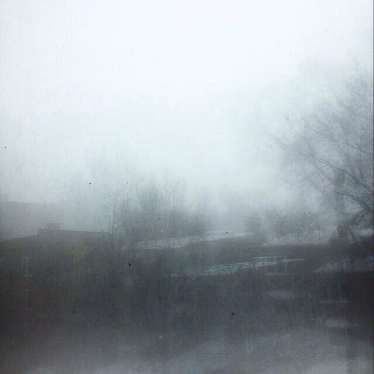 winter window Mornings Windows Blackandwhite Ethereal