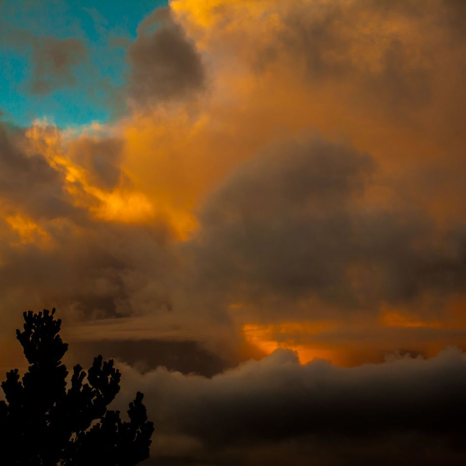 Sky Nature Cloud - Sky Outdoors Sunset Bay Oregon Coos Bay Photography Jewell Photography Oregon Coast Northbend DSLR Photography Canonphotography Nature Scenics Outdoor Photography Stormy Clouds Beauty In Nature Dramatic Sky Bayarea