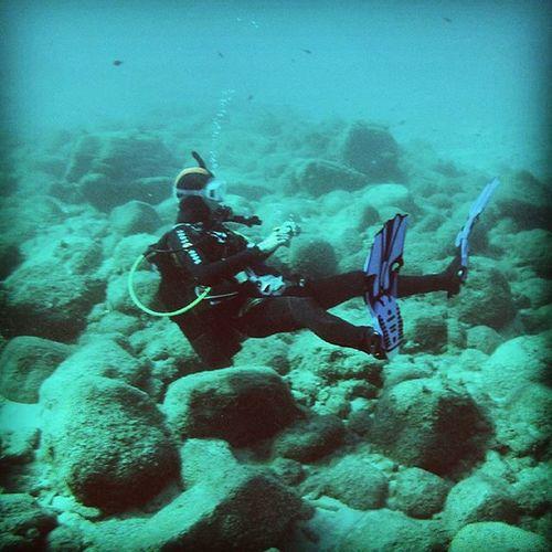 Chilling in the ocean @elektrajulia TBT  Sardegna Holidays SCUBA Scubadiving Chillingintheocean FreeTime Summer Diving Diveforlife Elektrajulia Me Beste Wantitagain Wantitnow Loveit 💙🐠🐡🐙