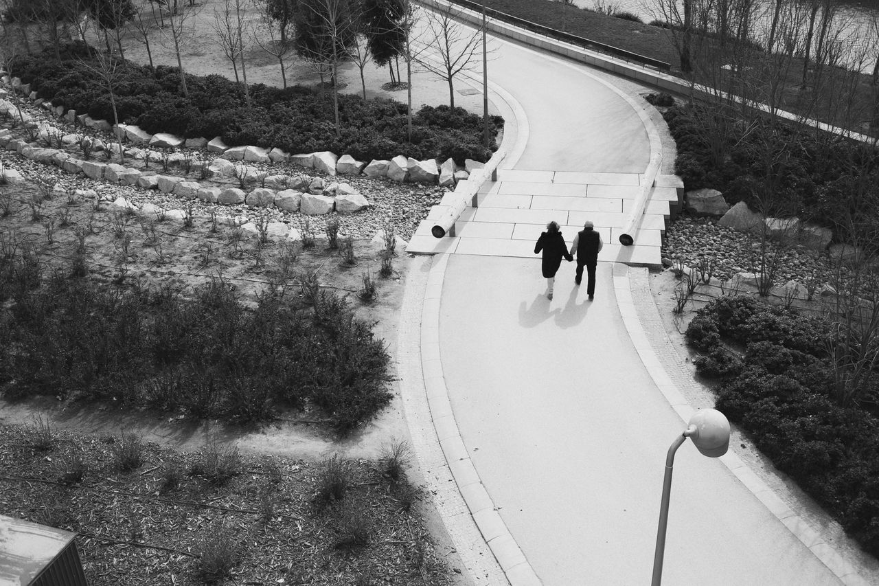 Curve Day Full Length High Angle View Leisure Activity Love Madrid Men Nature Outdoors Park People Real People Road Skateboard Park SPAIN Street Togetherness Transportation Tree Two People Walking Winding Road