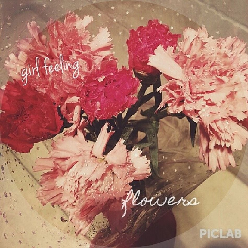 great! Piclab_hd Piclab Vscocam VSCO flower pink 38 plant love beautiful