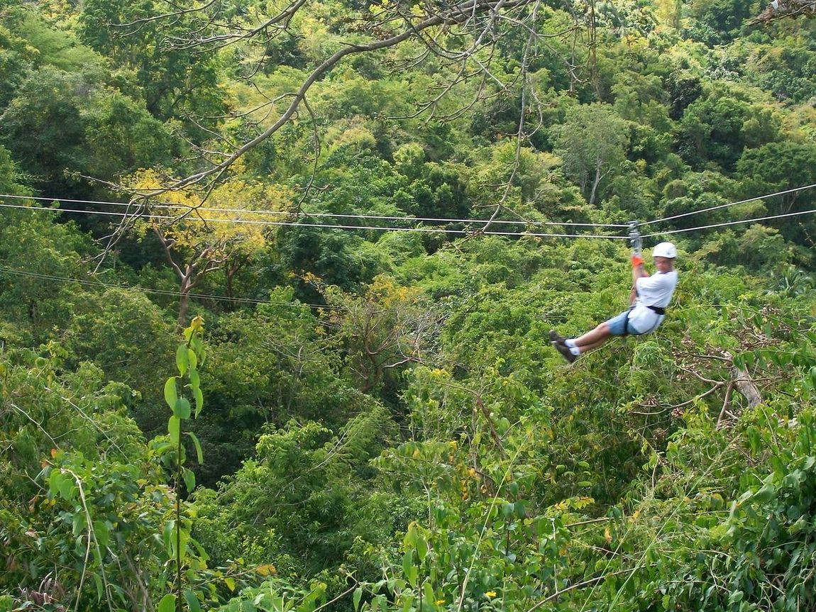 Living Bold Ziplining Zipline Rain Forest Rainforest Antiqua