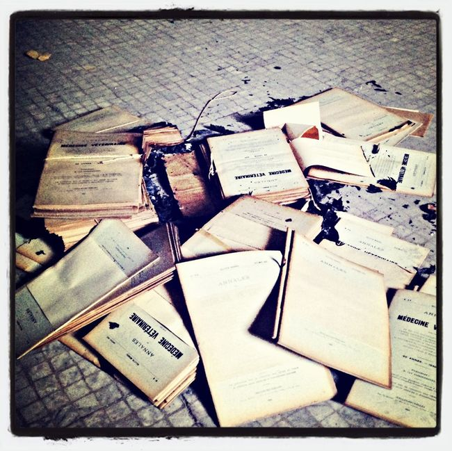 Urbanexploration Urbex Urbexphotography Abandoned Brussels