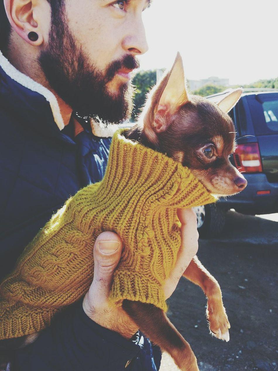 Animal Lover Chihuahua Puppy Love Dog Boyfriend Style Fashion