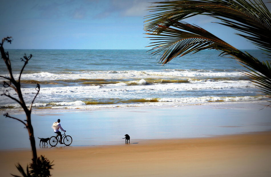 Beach Beauty In Nature Cicling Unites Horizon Over Water Leisure Activity Men Real People Scenics Sea Sky Tranquil Scene Water