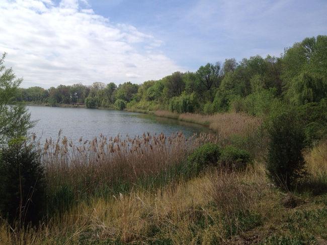 Falls Township Park