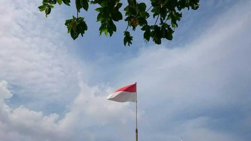My flag INDONESIA EyeEm Indonesia Merahputih This Is Indonesia