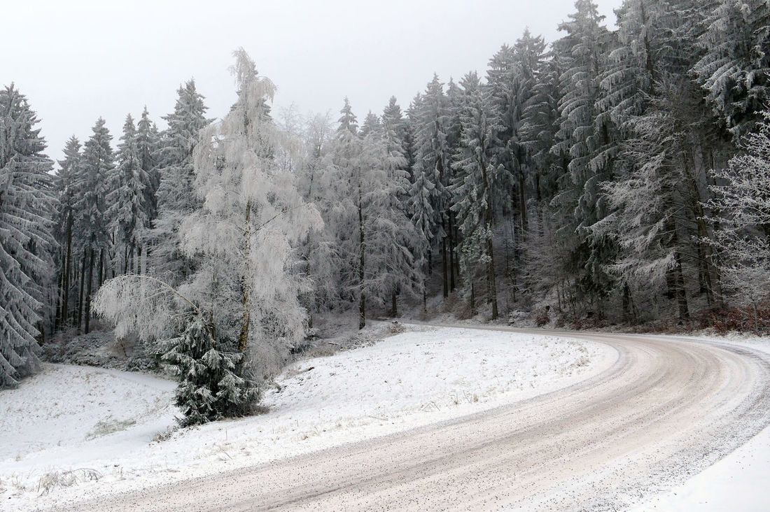 Could  Gräfenroda Landscape My Winter Favorites Schneelandschaft Tree Weiss Winter