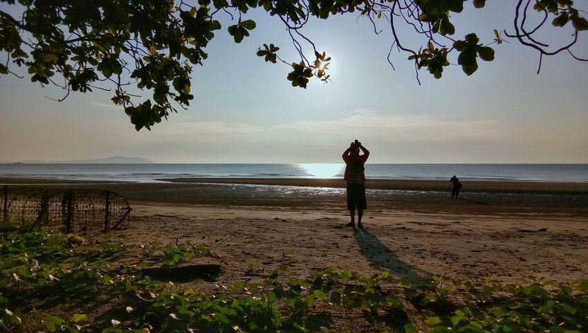 Tree Silhouette Beach Sky Sea One Person Outdoors Horizon Over Water Nature Sunrise Landscape Sandy Beach Greenleaf Silhouette