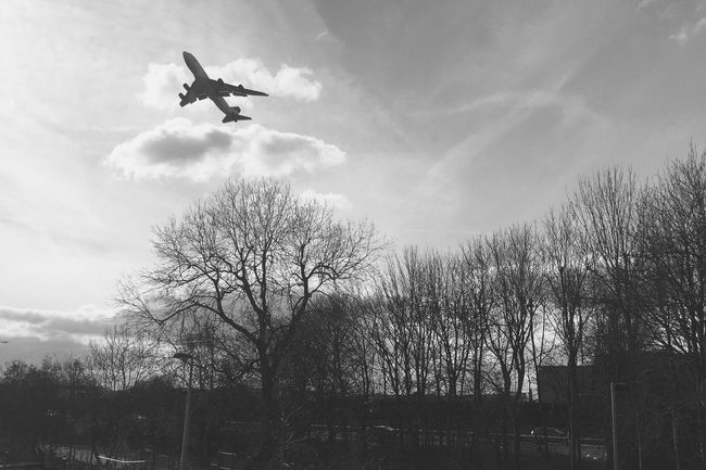 London Taking Photos EyeEm Best Shots Eye4photography  IPhoneography Pastel Check This Out Airplane Virgin Atlantic Aircraft