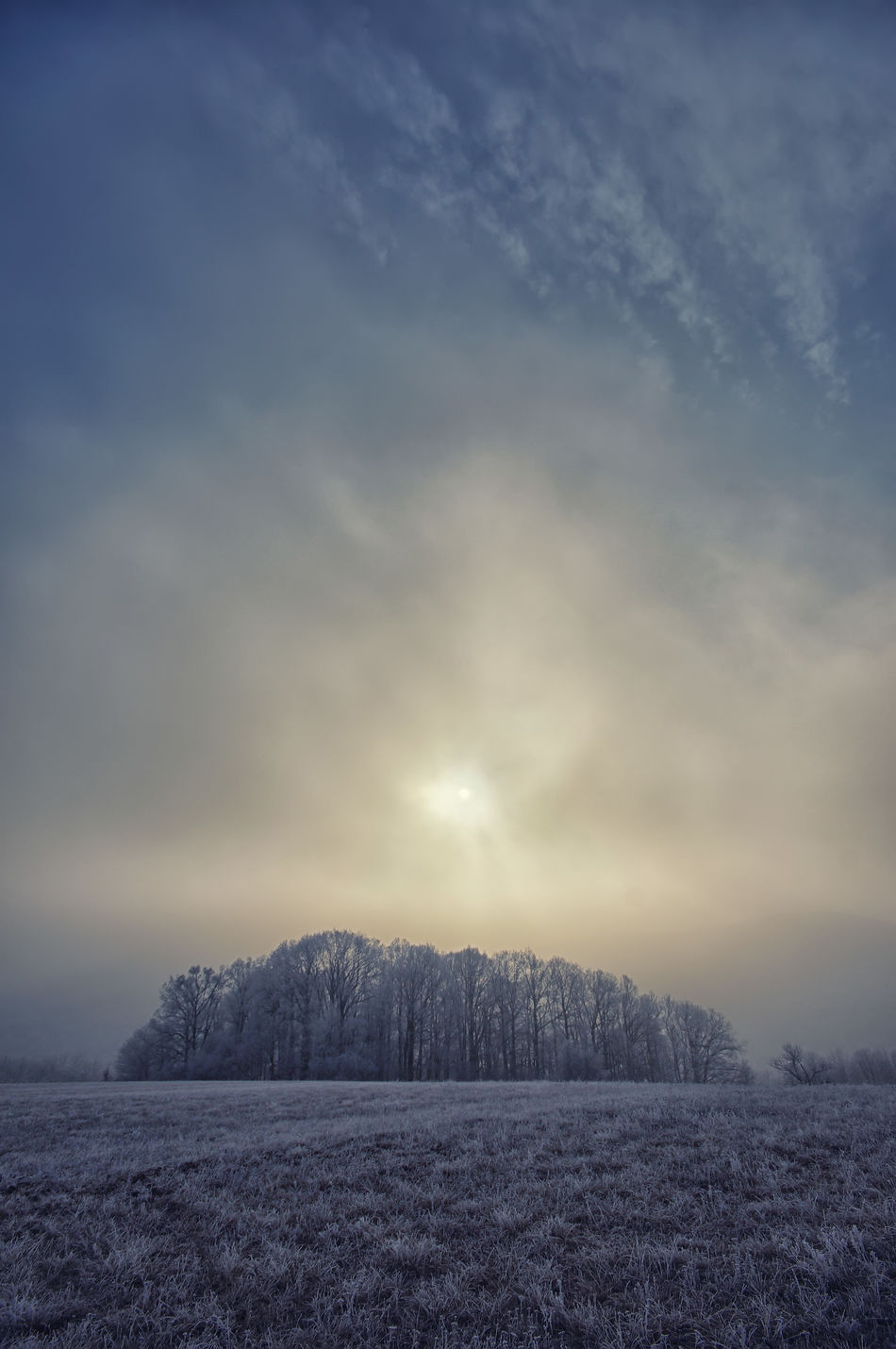 Winter sun above the trees Beauty In Nature Clouds And Sky Cold Temperature Day Freeze Frost Landscape Nature No People Outdoors Scenics Sky Sky And Clouds Snow Sun Tree Winter Winter Wintertime ⛄