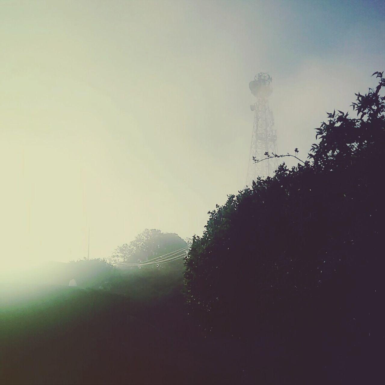 Lonelytower Mist Hills