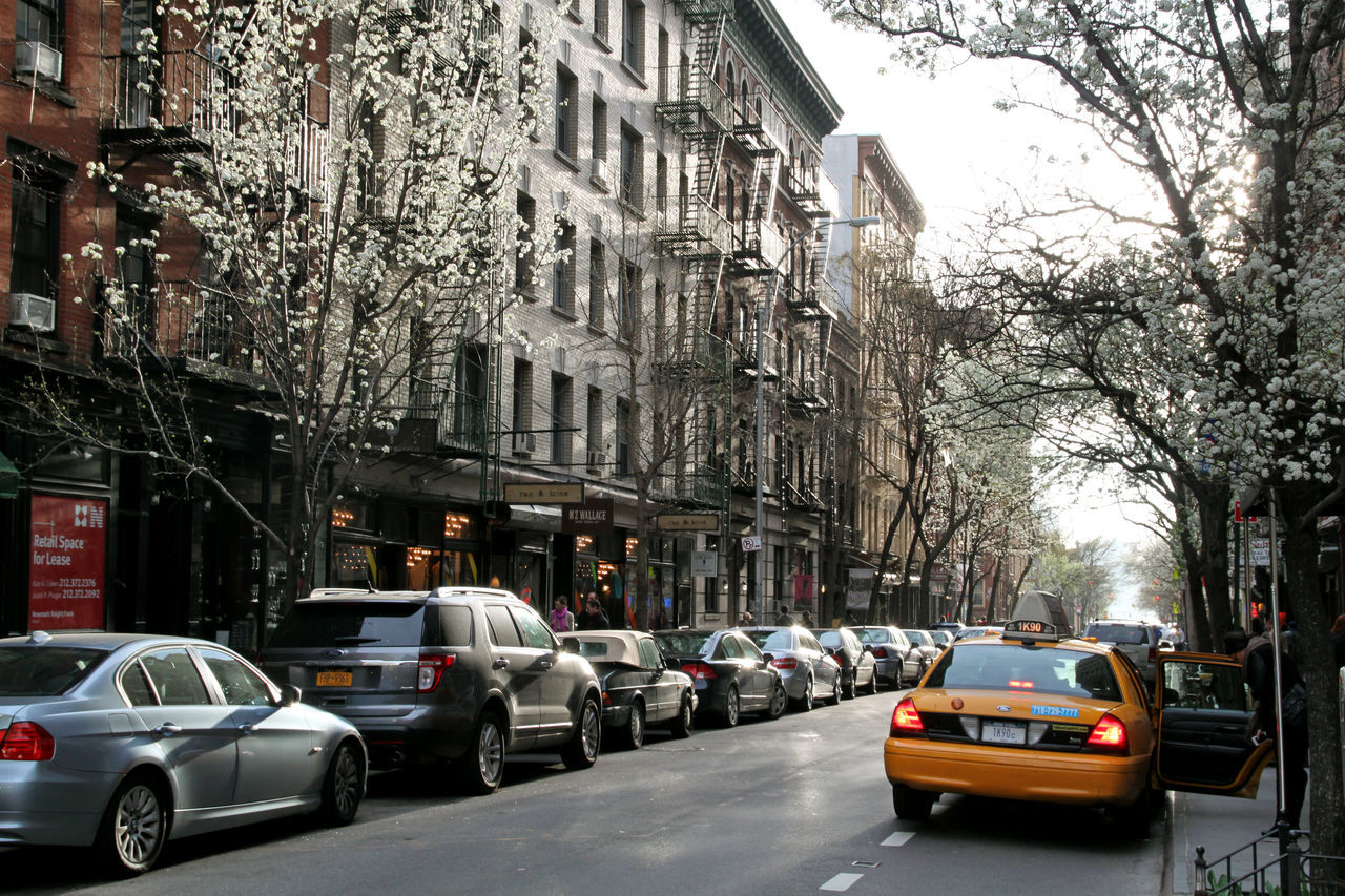 Architecture Beautiful Light Car Daydreaming Manhattan New York City New York In Spring New York Taxi Outdoors Street The City Light Travel Destinations Tree