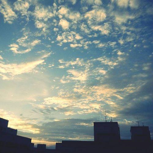 今天一睜開眼睛就是這片久違的天空 好想,好想把ㄋ忘記。可惜…哎 風景好,人好,心不好。 久違的天 未振作