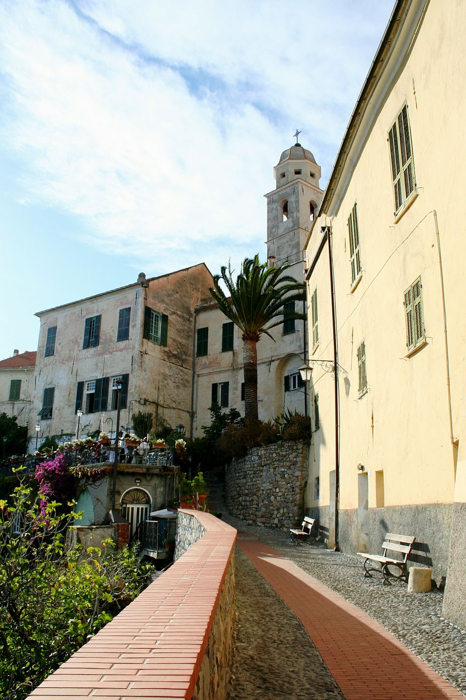 Building Exterior Architecture Street Built Structure Outdoors Sky No People Cloud - Sky Day Medieval Italian Village  Mediterranean Village Liguria,Italy Travel Destinations Sunlight Growth Cervo Ligure Tourism TravelBlooming In The Street Vicolo Del Paese Narrow Street Mediterranean Mood
