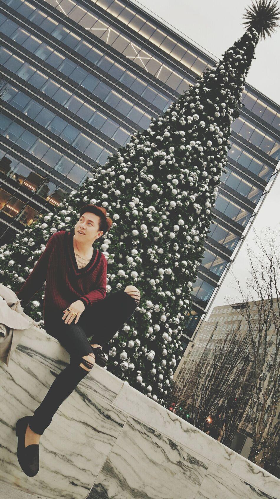 Christmas time Christmas Tree