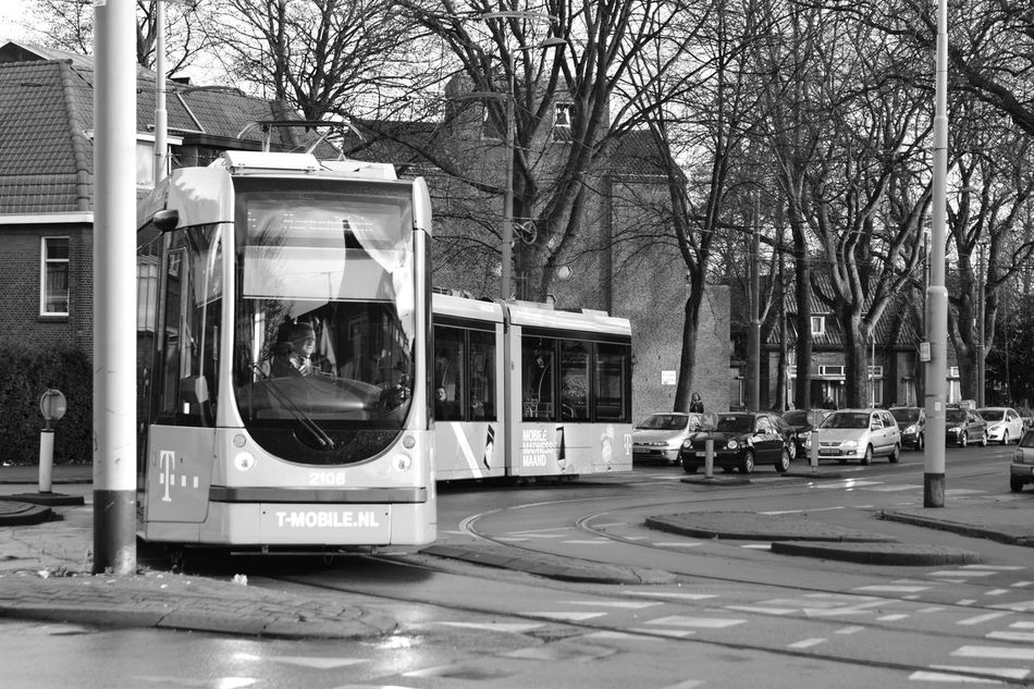 Architecture City Day Mode Of Transport Netherlands No People Outdoors Pink Rotterdam Tram Transportation Where Are You Going?