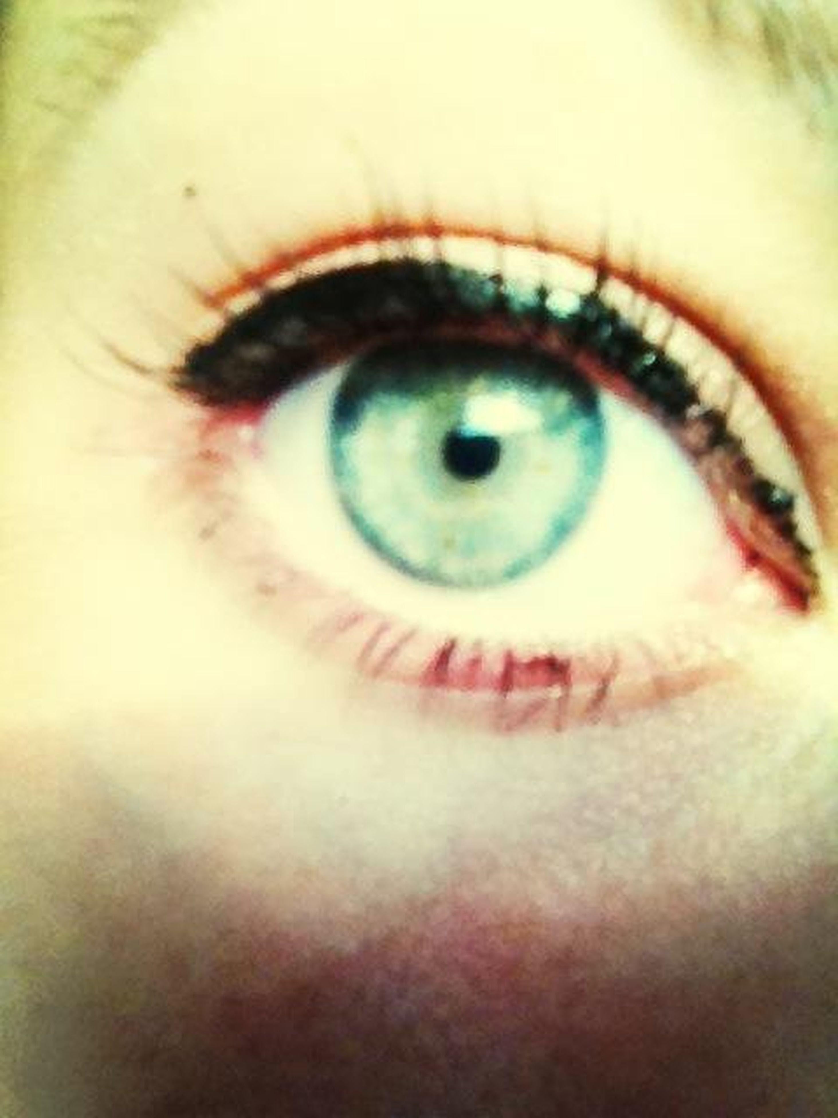 human eye, eyelash, close-up, eyesight, looking at camera, sensory perception, portrait, extreme close-up, part of, iris - eye, indoors, eyeball, human face, human skin, extreme close up, vision, lifestyles