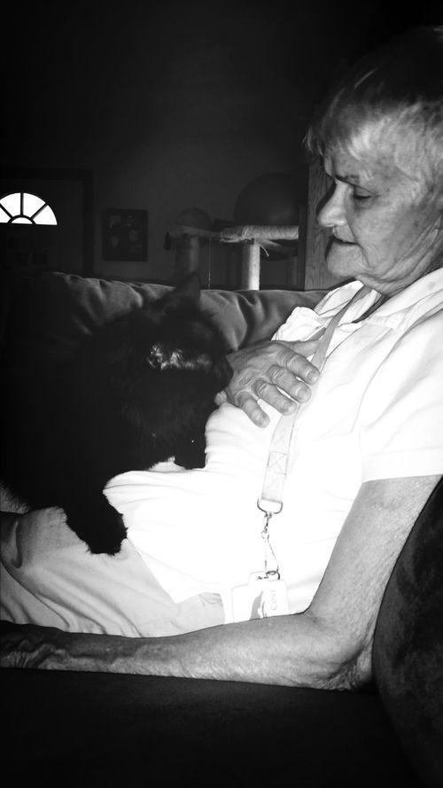 Cat Lovers Black & White What I Value Grandma Love