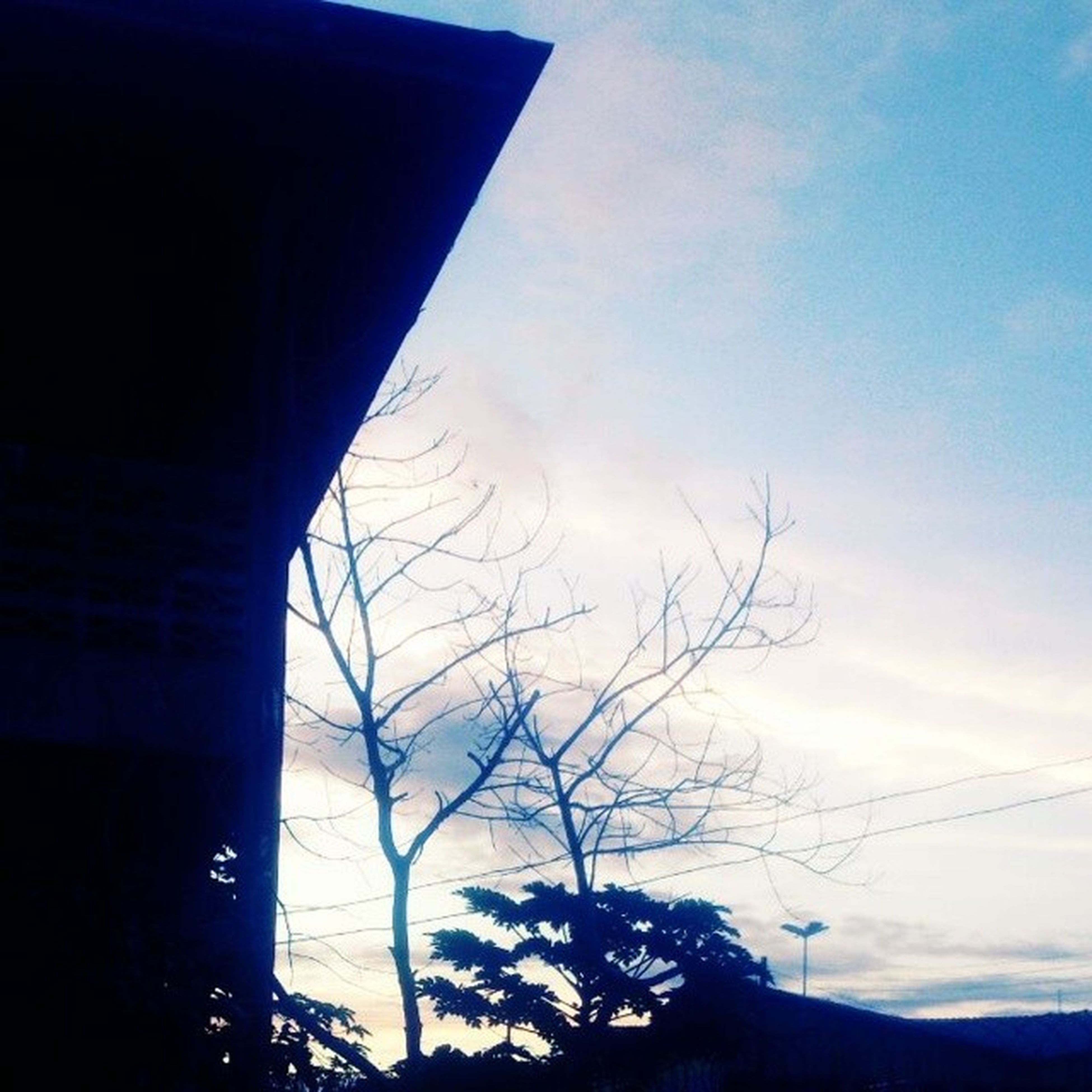low angle view, silhouette, tree, sky, bare tree, built structure, architecture, branch, building exterior, sunset, blue, nature, cloud - sky, cloud, dusk, no people, outdoors, high section, beauty in nature, tranquility