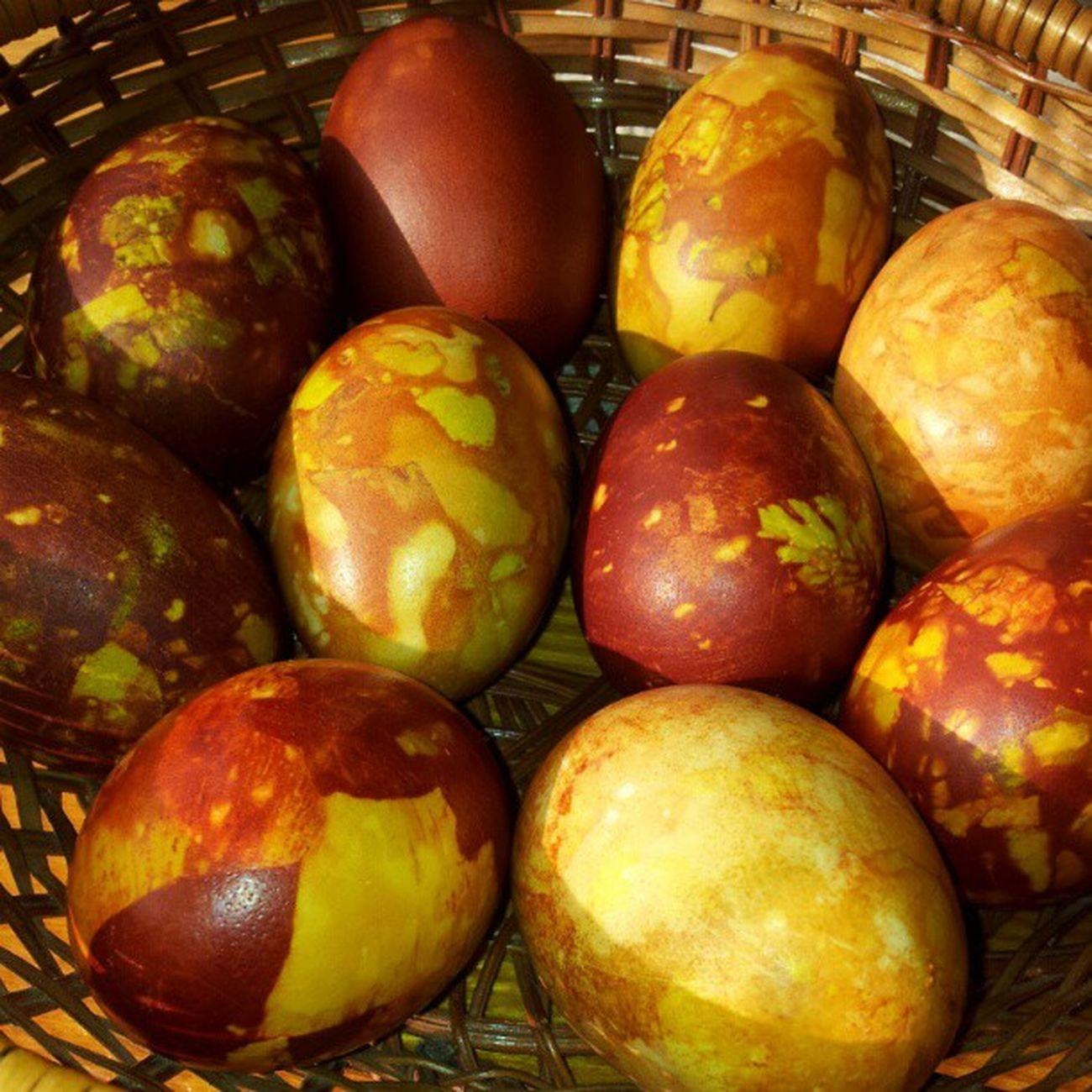 pirmās oliņas jau tiks iesvētītas šodien. Eggs LIeldienas